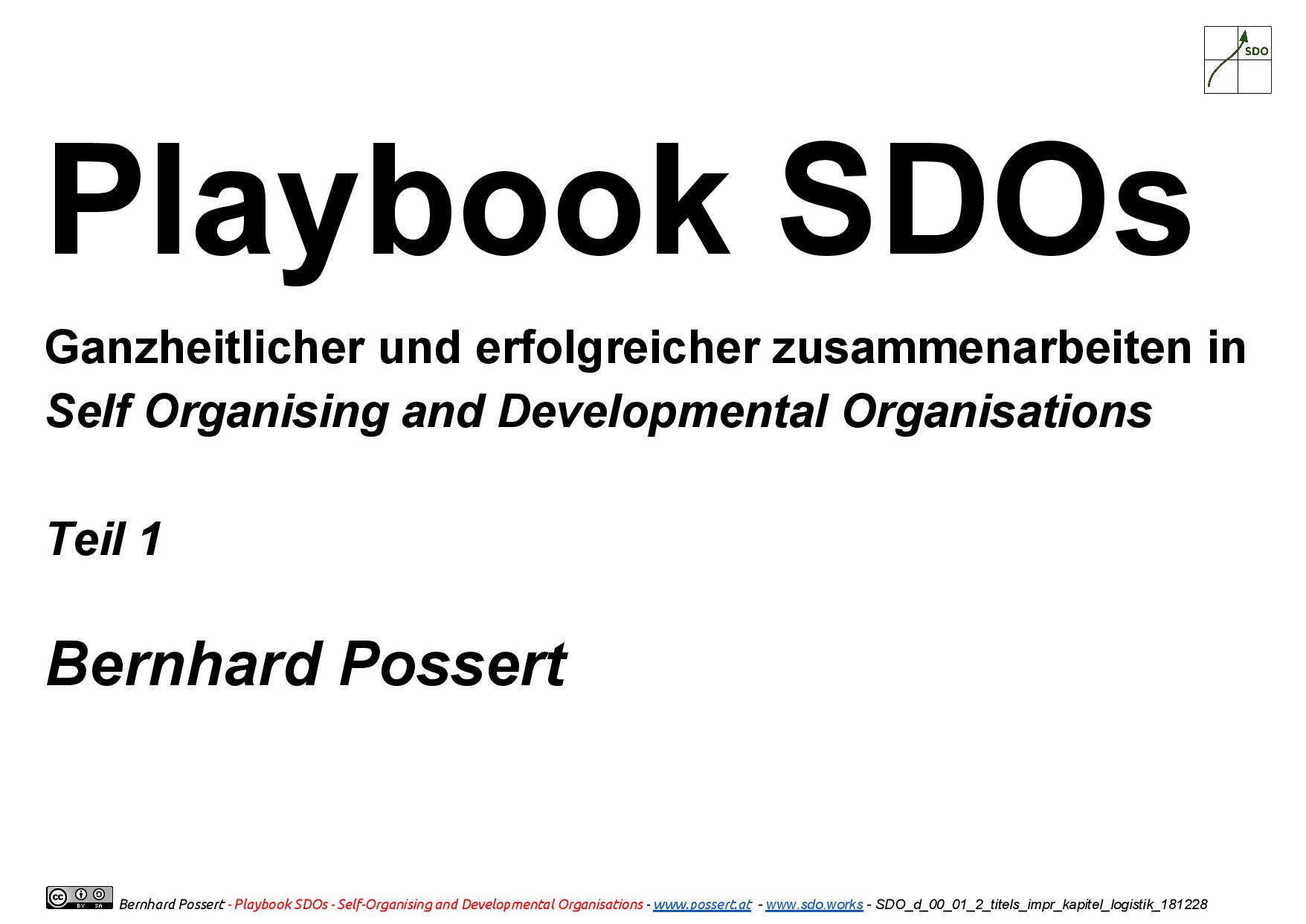 playbook sdo d 181229 cover
